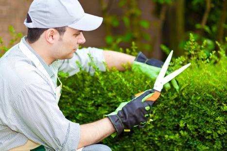 Jardinier paysagiste à Fernelmont